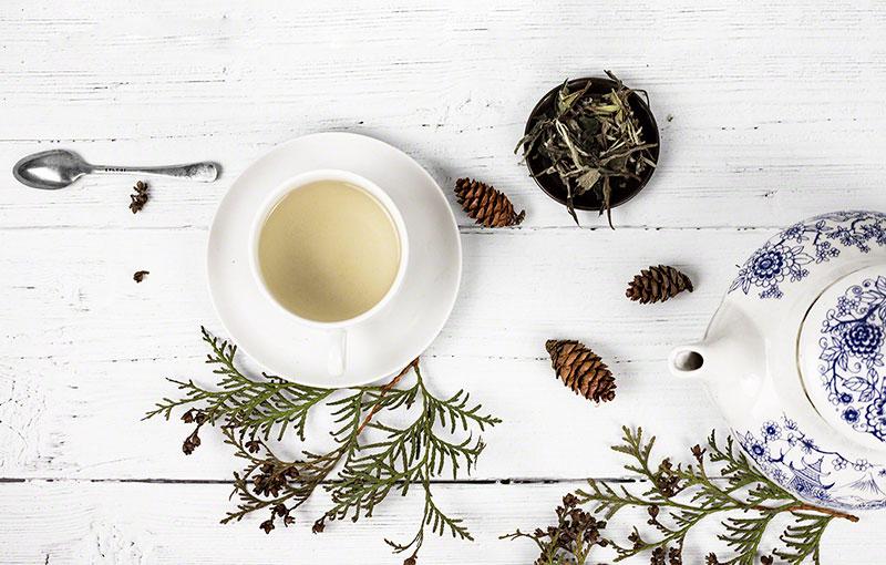 chá importante aliado no emagrecimento